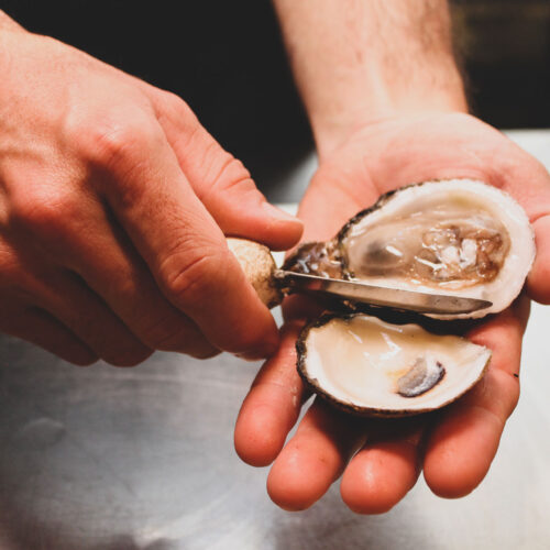 Oyster shuck at the Oyster Bar in downtown St. Petersburg, FL
